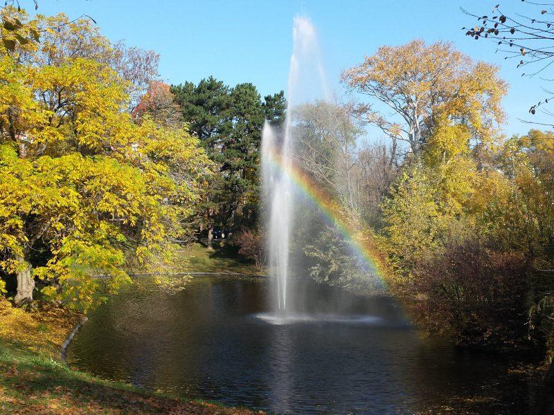 Bild zeigt einen kleinen Teich mit einer Fontäne. Die Bäume sind herbstlich geld verfärbt und durch die Sonne erscheint ein kleiner Regenbogen unter einem Wasserstrahl